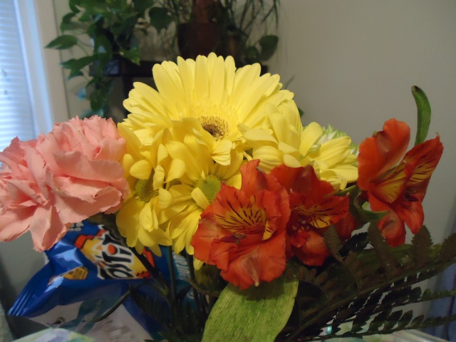 harry bought me flowers! 30 sept 2013 linda randall