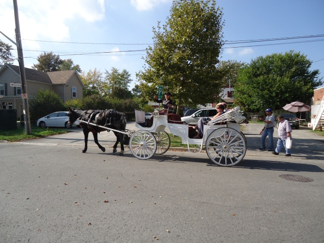 white buggy black horse carriage riders  1 oct 2013 246 pm edt NOTL ontario photo linda randall