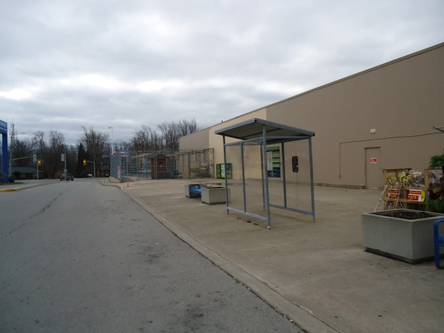 Fort Erie Transit Bus Shelter Niagara Regional Bus (niagara falls, port colborne welland st catharines ) walmart bus stop
