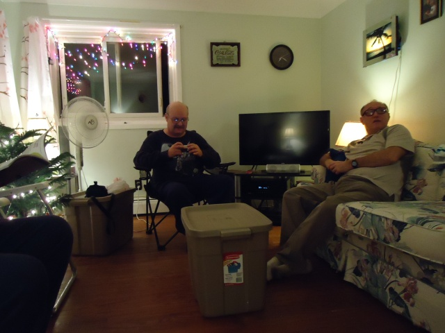 george and clyde in my living room christmas lights tree party 30 nov 2013 linda randall