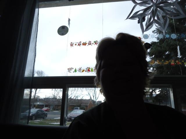linda randall shadows at christmas dec 2013