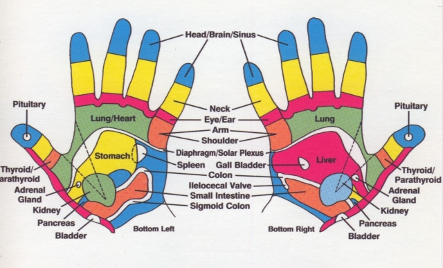 reflexology hand chart inside part of hands golf ball massage exercises linda randall the idea girl says works good for back pain