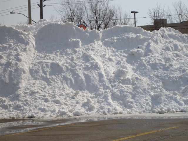 14 ft snow drift piles blizzard sobeys parking lot 14 mar 2014 linda randall idea girl canada