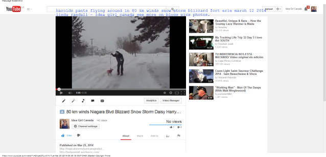 harolds pants fly in wind 80 km winds Niagara Blvd Blizzard Snow Storm Daisy Harry Linda the idea girl says - YouTube