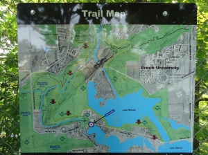 Decew Falls Hiking Map linda randall harold chisholm