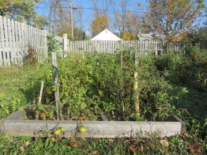 Sally's Garden The Salvation Army 255 Gilmore Rd Fort Erie - Fort Erie Security Network Idea Girl Canada