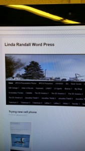 jan 12 2016 linda randall wordpress blog pic